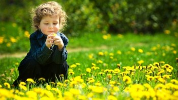 Child looking at Flowers in the Grass