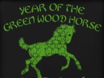 chinese_year_of_the_green_wood_horse_premium_gift_box-rfc4a0503411846ce921e3a63170197c2_ag9ey_8byvr_512